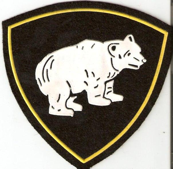вв россии логотип наши дни энтузиасты