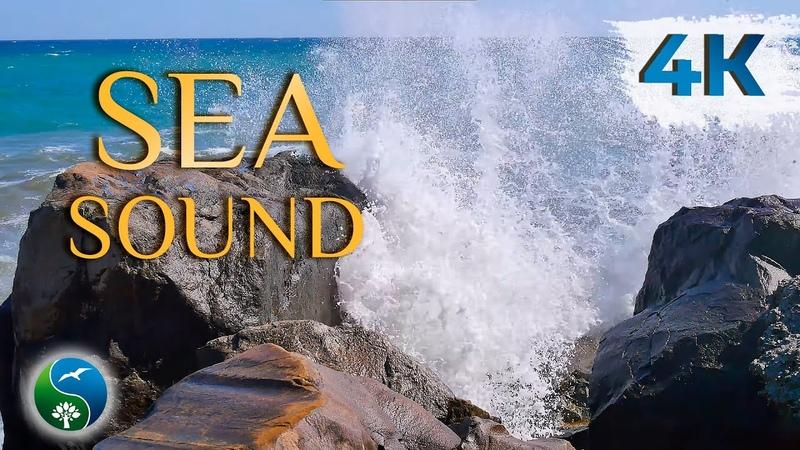 КРАСИВОЕ МОРЕ МОРСКОЙ БРИЗ ДЛЯ ДУШИ МОРЕ Звуки Моря для Релаксации и медитации