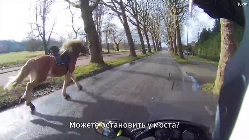 Увидев ТАКОЕ мотоциклист рванул с места И стал героем Интернета mp4
