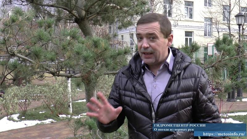 Прогноз погоды на 26 27 ноября В Москве ожидаются туман гололед гололедица и осадки