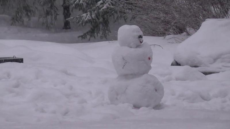 Новосибирск 1 и падает снег