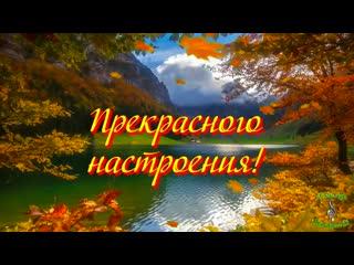 С Днем Рождения в ноябре Красивое видео поздравление