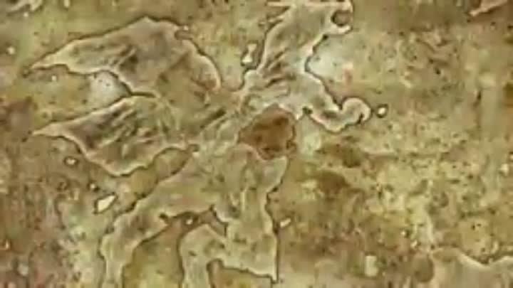 2 Seikoku no Dragonar 2 серия ОзвучилиAlorian Mutsuko Air Академия Драгонар 2 серия русская озвучка Метка