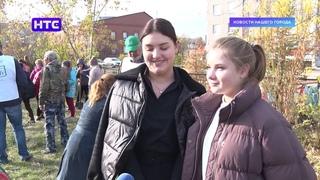 В 9 школе высадили кедровую аллею