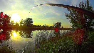 УДОЧКА ТРЕЩИТ!!! БЕШЕНЫЙ КЛЕВ! УХ! ЭТО НАДО ВИДЕТЬ! Рыбалка на поплавок.