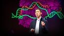 Can we cure genetic diseases by rewriting DNA David R Liu