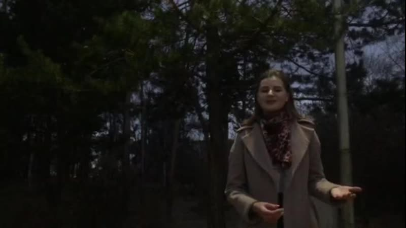 Филимонова Елизавета НБ 20 2 Хулиган