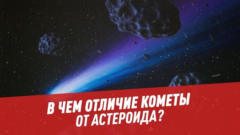 В чем отличие кометы от астероида Шоу Картаева и Махарадзе