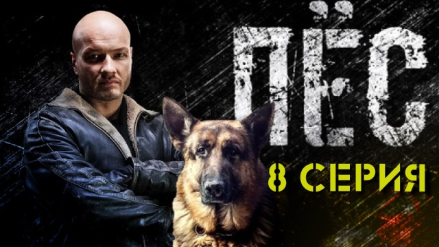 Пёс внутреннее расследование 8 я серия