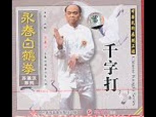 Thousand Word Hits / Wing Chun White Crane Fist by Su, Ying Han