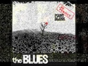 Crossfire - dr Project Point Blank Blues Band