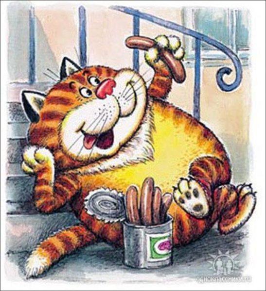 Кот обжора прикольные картинки