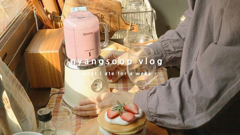 냥숲 vlog 집밥이 좋은 집순이의 겨울 삼시세끼 요리