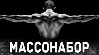 Набор мышечной массы - профицит, норма белка, тайминги приема пищи