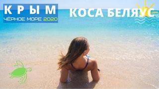 Беляус одно из лучших мест дикого отдыха в Крыму 🌊 наш отдых с палаткой на берегу чёрного моря