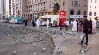 Saudi Arabia Travel Madina City Tour by Bus