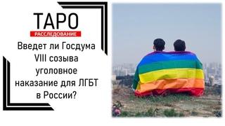 Таро-расследование: Введет ли Госдума VIII созыва уголовное наказание для ЛГБТ в России?