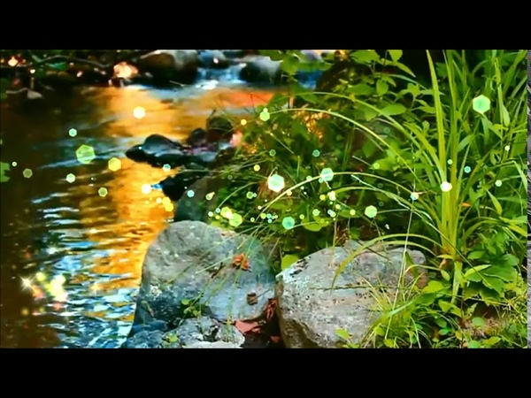🍀ЗВУКИ ЛЕСА ПЕНИЕ ПТИЦ ШУМ ВОДЫ ⏳ Релаксация Медитация Расслабляющие звуки природы