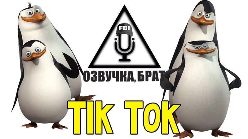 Озвучка Пингвины из Мадагаскара брат Tik Tok