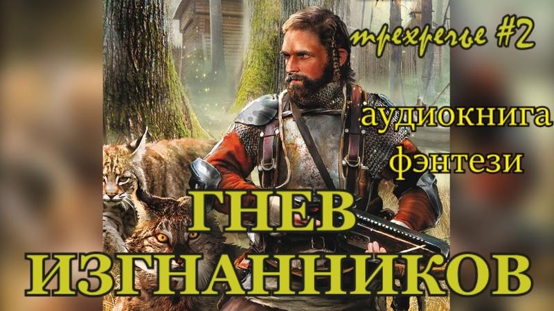 Побережник Николай Трёхречье 2 Гнев изгнанников Альберт Фомин FAN12 2018 Аудиокнига Фэнтези