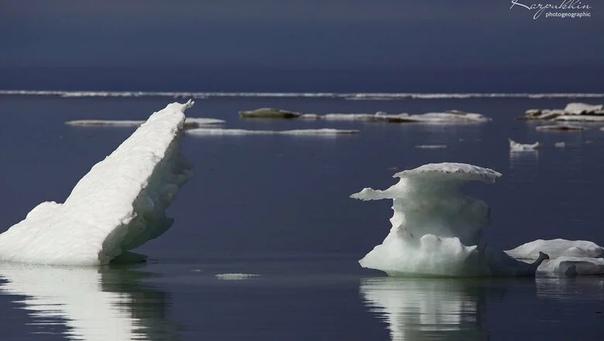 Море Лаптевых не застыло в октябре впервые за всю историю наблюдений В первый раз с начала наблюдений колыбель арктических льдов море Лаптевых и в конце октября остается свободном ото льда.