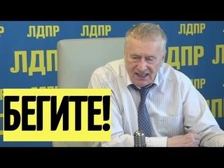 Срочно! Жириновский ШОКИРОВАЛ Украину и дал ЦЕННЫЙ совет