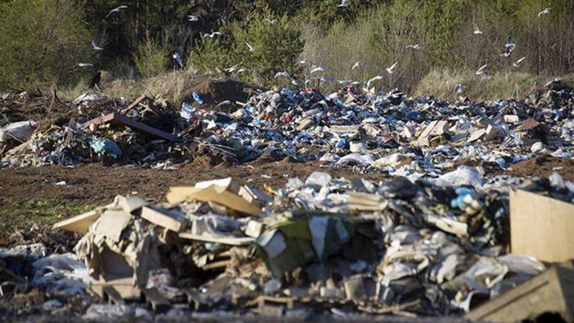 Детальный обзор компании Waste Management