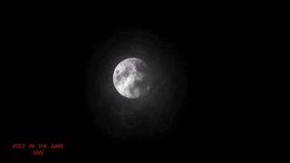 KLAUS SCHULZE  - VOCS IN THE DARK -