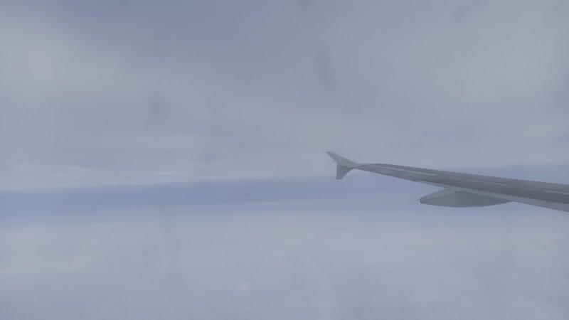 Ural Airlines Airbus A320 VQ BDM Архангельск Жуковский заход на посадку 1 22 октября 2020