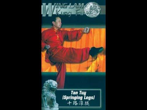 Shaolin KungFu Tan Tuy