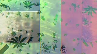 Berner & B-Real - House Titles (feat. Demrick) (Visualizer)