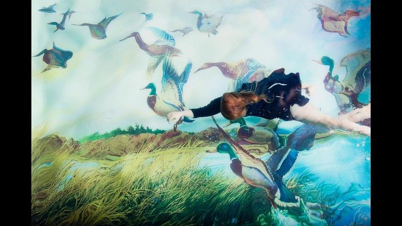 Klaus Wiese Mystic Landscapes II