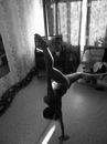 Личный фотоальбом Валерки Осмоловской