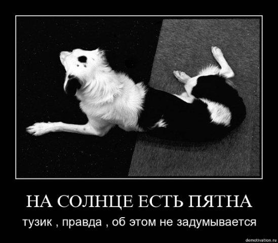 Вася Гайфуллин фото №27
