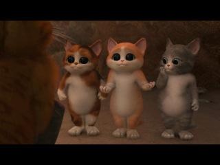 Котята из Шрека :3
