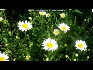 «НЕЖНОВО ЛЕТО 2011г.» под музыку 1558 - Эдвард Григ - Утро в лесу (музыказвуки природы). Picrolla