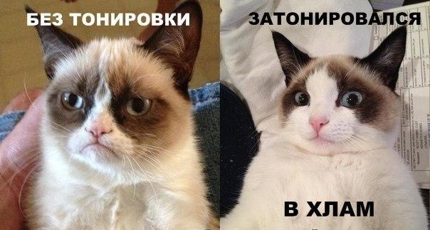 Фото №395651618 со страницы Дмитрия Сергиенко