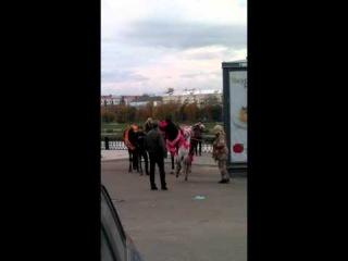 """Бессердечная сука бьёт пони г. ТВЕРЬ, около кинотеатра """"Звезда"""""""