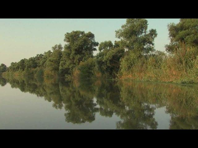 Дельта Волги Лето Delta of Volga river Summer