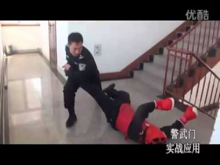 Chinese Police Kung Fu