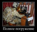 Фотоальбом Дениса Исакова