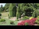 Хвойный сад Душана Горака, Чехия (краткая версия)