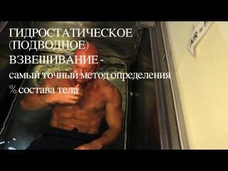 EasyFitness Денис Семенихин - Отчет о борьбе за 6%