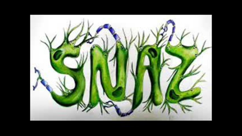 Snaz - LIVE @ Extrema 400 Melbourne on AH. FM (05-04-2015). [Trance-Epocha]