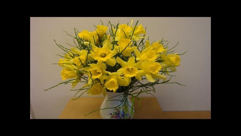 DIY Blumenstrauß mit Osterglocken selber binden