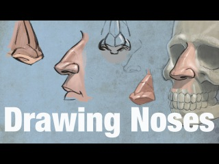 Drawing Noses - How to Draw Noses