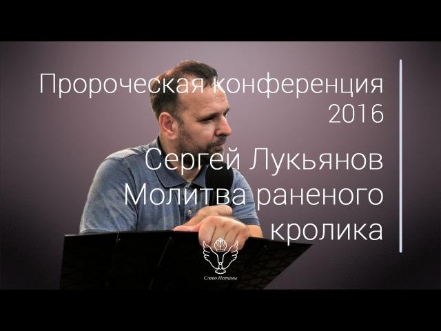 Сергей Лукьянов Молитва раненого кролика