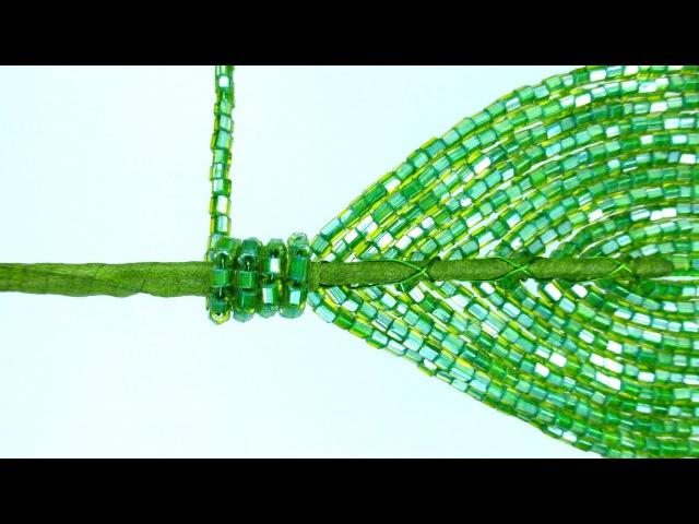 Амазонская лилия Урок 14 Укрепление листьев Amazon lily Lesson 14 Reinforcement of leaves