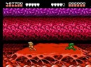NES Battletoads Incredible tricks video TAS