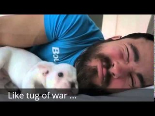 Man Wakes Up to the Cutest Alarm Clock Ever